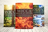 Wicca Starter Kit: Wicca for Beginners, Finding Your Path, and Living a Magical Life (Wicca Starter Kit Series)