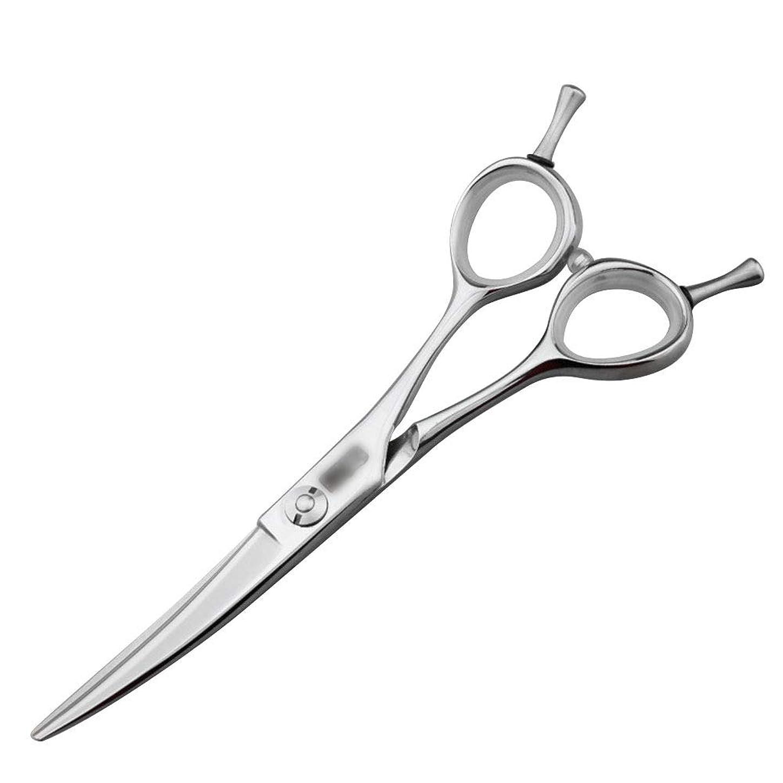 困惑する矩形不潔5.5インチの美容院の専門の上限の理髪はさみ、専門の注文の平らなはさみはさみ モデリングツール (色 : Silver)