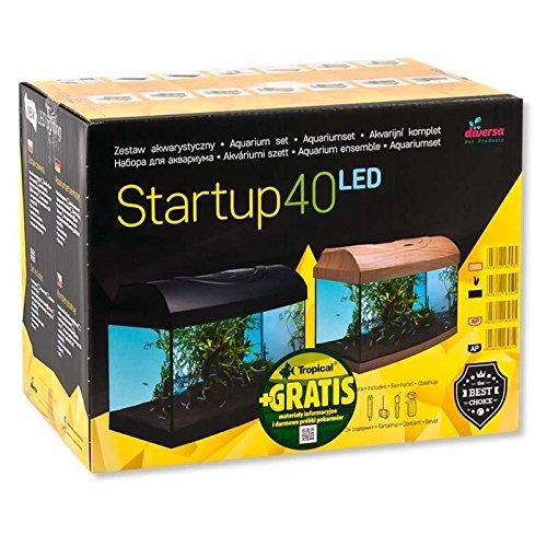 Diversa Aquarium Startup Set LED, rechteck schwarz, Aquarien komplett Set mit Glasbecken und Zubehör für Ihre Fische und EXPERT LED Beleuchtung (Startup Set LED 40)