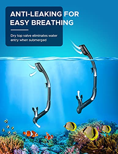 OMORC Adult Snorkel Set,Anti Leak Snorkel Gear for Women and Men,Anti-Fog Impact Resistant Panoramic Tempered Glass Snorkeling Set,Free Breathing&Easy Adjustable Strap Snorkel Set,Package Included