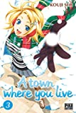 A town where you live T03
