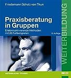 Praxisberatung in Gruppen: Erlebnisaktivierende Methoden mit 20 Fallbeispielen (Beltz Weiterbildung: Fachbuch)