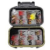 Ajboy 72 Stück Fliegenfischen Fliegen Sortiment Forellenfischen Fliegen Fliegen Nass Trockenfliegen Köder, bunt, 13.5 * 9 * 3.5 cm