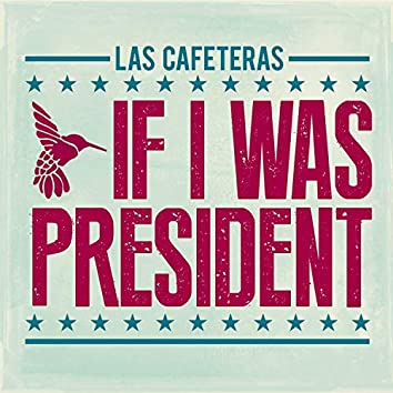 If I Was President