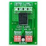 CZH-LABS Electronics-Salon Low Voltage Disconnect Module LVD, 12V 10A, Protect/Prolong Battery Life.