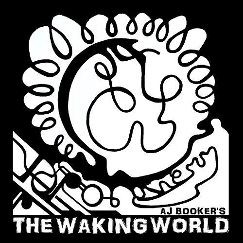 The Waking World audiobook cover art