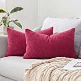 MIULEE 2P 30*50 Daboluo pillow cover-18