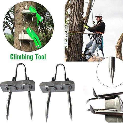 sanguiner Tree Climbing Spikes Teeth Claws Crampons for Hunting Observation, Picking Fruit, Coconut, Simple to Use.