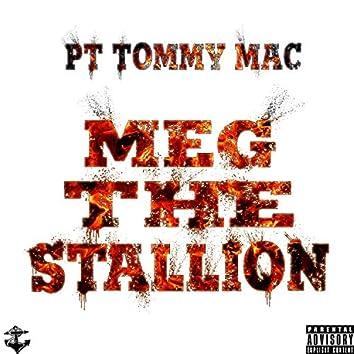 Meg the Stallion