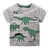 LUBITY Enfant en Bas âge Enfants BéBé Garçon Vêtements Manches Courtes Motif de Dessin Animé Tops Blouse Dino Trails Cartoon Dinosaure Imprimer Chic Col Rond Été Pas Cher T-Shirt (Gris3, 6-7ans)