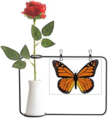 YaoX Butterfly Specimen in Orange Artificial Rose Flower Hanging Vases Decoration Bottle