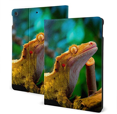 Cool Reptile Gecko Lizard Case for New Ipad 7th Generation 10.2 Inch 2019 Multi-Angle Viewing Folio Smart Stand Cover Auto Wake/Sleep for Ipad 10.2' Tablet-Reptile Gecko Lizard Amazing-One Size