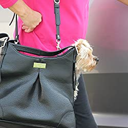 Airline-approved dog carrier. Super bougie and practical!