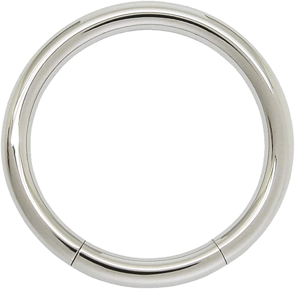 Seamless 316L Surgical Steel Segment Ring
