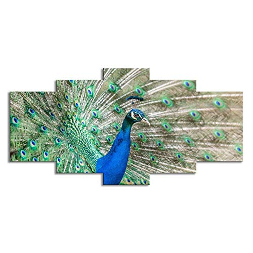 Swlyddm Kunstdruck auf Leinwand, 5-teilig, Bilder – Pfau – Wandgemälde Moderne Wohnzimmer Dekoration – fertig zum Aufhängen – GW-16403SA