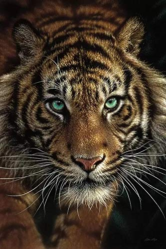 JHGJHK Arte Animal Jaguar Tigre Pintura Mural Pintura al óleo Sala de Estar hogar Moderno decoración de Pared Pintura 16
