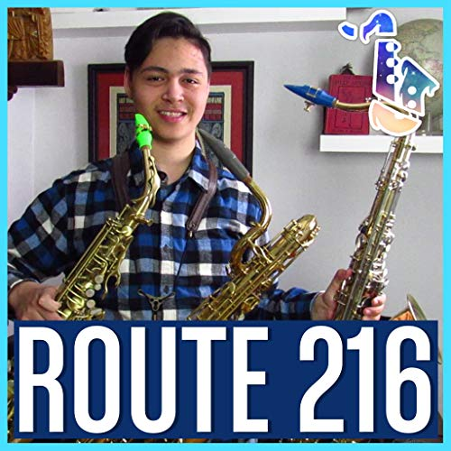 Route 216 (From 'Pokemon Diamond & Pearl')