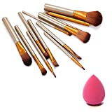 Naked-plus Nylon and Wooden Makeup Brush Set of 12 with Storage Box and Sponge Puff (Brown and Beige)