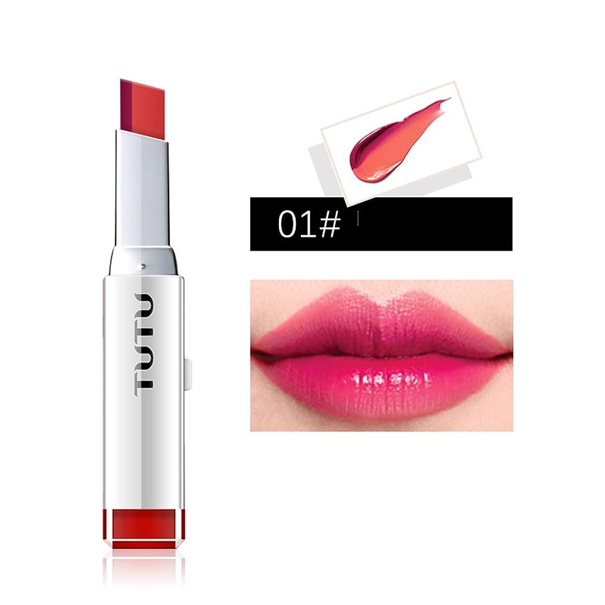 従事した分岐するウイルス女性の口紅 ダブルカラー グラデーションリップ バーリップスティック モイスチャライジンググロス 唇のメイク 1#