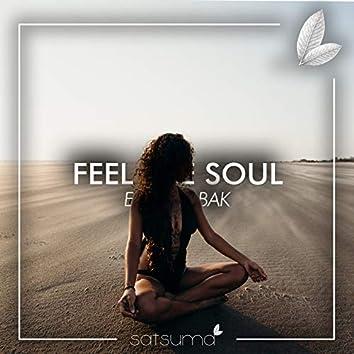 Feel the Soul