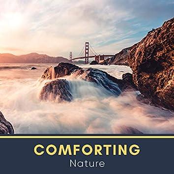 # 1 A 2019 Album: Comforting Nature