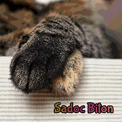 Sadoc Biton