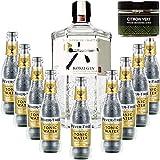 Paquete Gintonic - Gin Roku + 9 Fever Indian Tree Premium Agua - (70cl + 9 20cl *) + Pot 20 rodajas de limón seca verde
