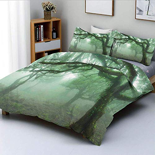 Duvet Cover Set,Laurel Forest in Portugal Foggy October Day Wild Magical Exotic Nature Photo Print Decorative 3 Piece Bedding Set with 2 Pillow Sham,Green Brown,Best Gift For Ki