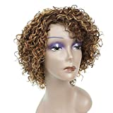 Short Kinky Curly Human Hair Wigs for Black Women, HUA Ombre Highlights P4/27/30 Short Curly Wigs for African American Mixed Color Human Hair Glueless Wigs