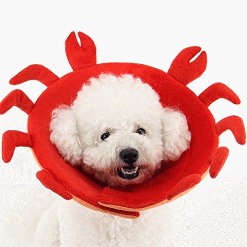 nikka(日華) エリザベスカラー 犬 猫 ソフト 傷舐め防止 引っ掻き防止 傷口保護 手術後のケア 柔らかい 軽量 ワイド アニマル カニ Lサイズ