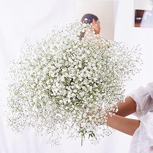 YIWOYI Flor seca natural Gypsophila flores frescas secas conservadas Gypsophila Paniculata Ramos de flores para bodas,...