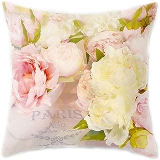 EAPTS 45x45CM Mediterranean Nordic Style Peach Velvet Home Decorative Cushion Cover Colored Rose Flower 3D Digital Printing Throw Pillow Case