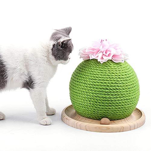 Roebii - Tiragraffi per Gatti con Erba gatta e Cactus, in sisal, Resistente, Giocattolo interattivo per Gatti