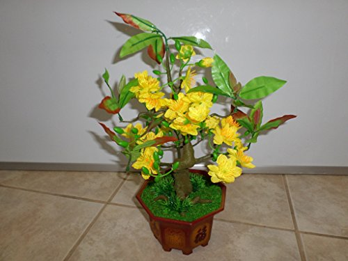 Plastic Artificial Yellow Apricot Flower Bonsai Tree 15 Inch Tall (HOA Mai) Require Assembly of The Branches.