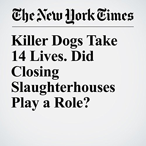 Killer Dogs Take 14 Lives. Did Closing Slaughterhouses Play a Role? copertina