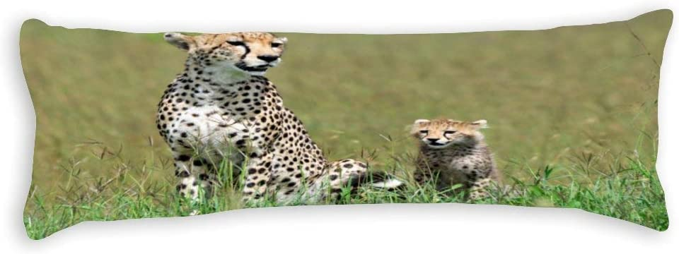 Yilooom Cheetah with Cub security Canvas Square Max 69% OFF Pillow Throw Cases Body P