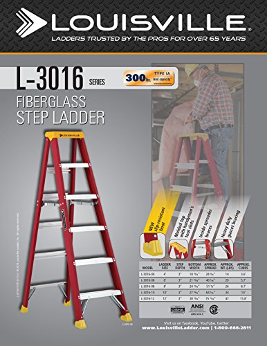 Louisville Ladder 4-Feet Fiberglass Stepladder, 300-Pound Capacity, L-3016-04