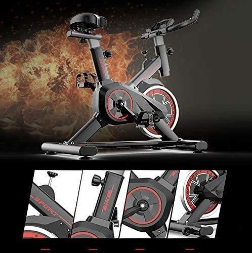 Maheegu Bicicleta estática de Interior, Bicicleta estática aeróbica con Volante silencioso impulsado por Correa, manubrios y Asientos Ajustables, Pantalla Digital LED, Gimnasio en casa,Black