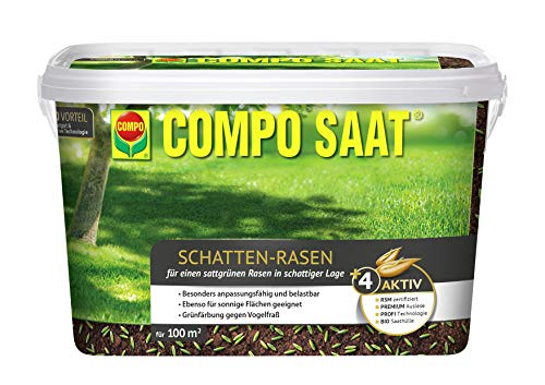 COMPO SAAT Schatten-Rasen, Spezielle Rasensaat-Mischung mit wirkaktivem Keimbeschleuniger, 2 kg, 100 m²