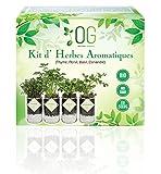 OG Kit Huerto Urbano - Kit Completo de 4 Plantas aromaticas (Tomillo, Cilantro, Albahaca y Perejil), 100% Semillas Bio, NO GMO y Origen EU. Todo Incluido para Cultivar Fácilmente Tus Hierbas Frescas