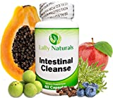 Natural Intestinal Cleanse for Humans - 10 Day All Natural Herbal Detox Formula - Non-GMO - Includes Wormwood and Black Walnut Hull to Support intestinal Health - 100% Guaranteed