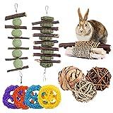 AYIYUN Kaninchen Spielzeug,11 Stück Kauspielzeug für Kleine Haustiere Natürlicher Kauspielzeug mit Apfelholzstäbchen und Grasball, Zähneknirschen,Spielzeug für Kaninchen,Hamster