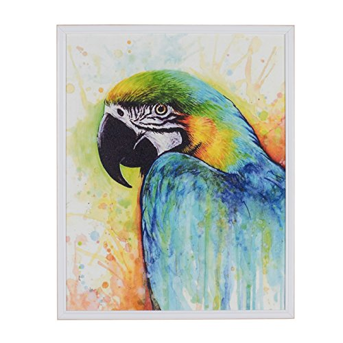 Belssia Cuadro con Diseño Loros Dibujo II, Madera, Multicolor, 42x4x52 cm