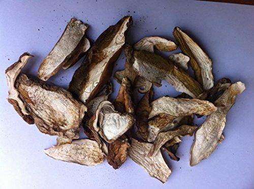 有機野生キノコポルチーニヤマドリタケ10 kg、グレードA