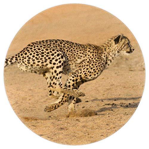 Wetia Laufender Gepard Runder Teppich für Kinder rutschfeste Außenteppiche, superweich für Wohnzimmer, Kinderzimmer, Babyzimmer, Balkon, Kreis 160cm
