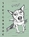 Husky Sketchbook: Unique drawing journal with 100 framed pages for you to sketch on! For all artist levels!