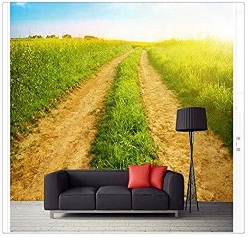 Decoración para el hogar 3D Space Landscape Wallpapers para sala de estar Custom Photo Nature Backgrounds 3D Papel tapiz no tejido Papel tapiz 3D Decoración-430cm×300cm