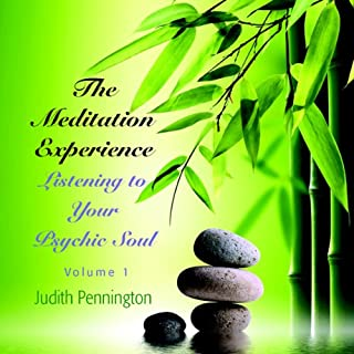 The Meditation Experience: Listening to Your Psychic Soul, Vol. 1 cover art
