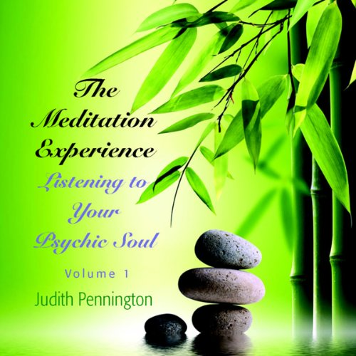 The Meditation Experience: Listening to Your Psychic Soul, Vol. 1 audiobook cover art