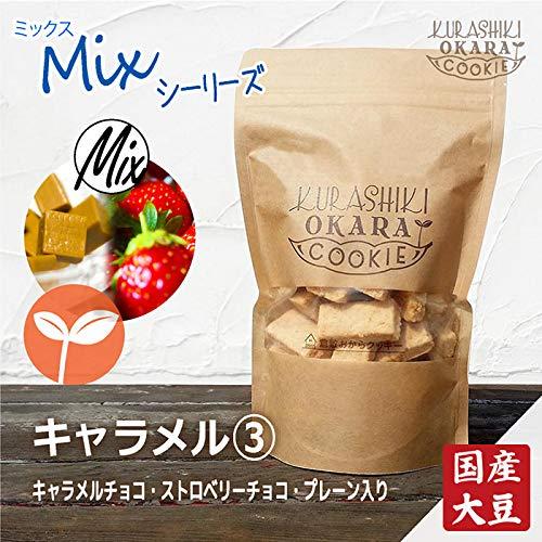 キャラメル3種 1袋(160g) 倉敷おからクッキー たんぱく質・食物繊維たっぷりの国産大豆生おから キャラメルチョコチップ・ストロベリーチョコチップ・プレーンの3種ミックス